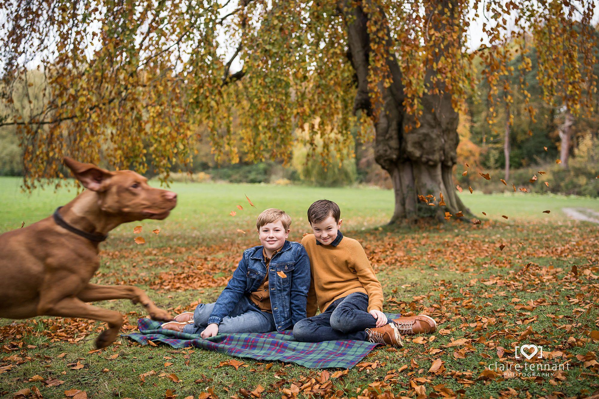 Funny Dog family photo